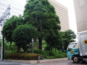 kawasaki01