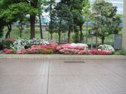 kawasaki1604